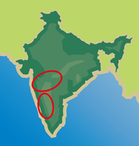 インドの地図